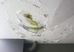 water damage indianapolis, water damage cleanup indianapolis, water damage restoration indianapolis