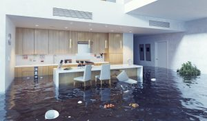 water damage cleanup indianapolis, water damageGeorgetown TX Water Restorationindianapolis, water damageGeorgetown TX water leak repairindianapolis
